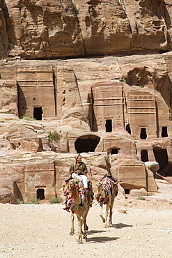 Local man with camels, tombs in the Wadi Musa area in the background, Petra, UNESCO World Heritage Site, Jordan, Middle East