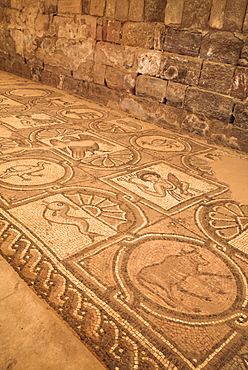Floor mosaics, Petra Church (Byzantine Church), built between the 5th and 7th centuries AD, Petra, UNESCO World Heritage Site, Jordan, Middle East