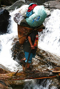 A porter crosses a river using a fallen log whilst carrying a heavy load up the Hingku Valley, near Lukla, south of Mount Everest, Nepal Himalaya, Nepal, Asia