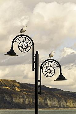 The famous Ammonite design streetlghts in Lyme Regis, Dorset, England, United Kingdom, Europe