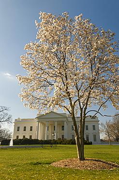 The White House, Washington, D.C., United States of America, North America