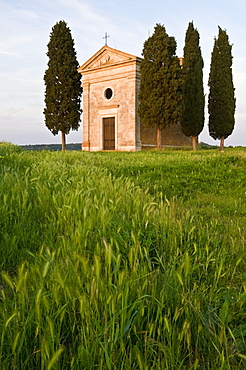Chapel Madonna di Vitaleta, Val d'Orcia, near Pienza, Tuscany, Italy, Europe - 803-40