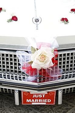 Wedding car, Corgiliano d'Otra, Lecce, Italy, Europe