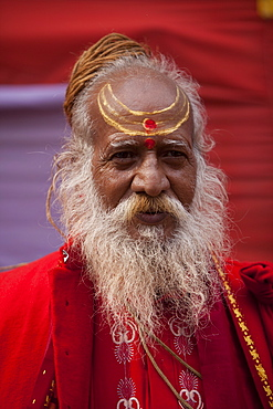 Sadhu at the Kumbh Mela in February 2010, Haridwar, Uttar Pradesh, India, Asia