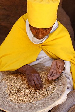 Nun sorting wheat in Bet Maryam church courtyard, Lalibela, Wollo, Ethiopia, Africa