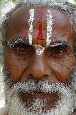 Hindu pilgrim from Jharkand wearing the trident-shaped mark worn by the devotees of Vishnu, Rishikesh, Uttarakhand, India, Asia