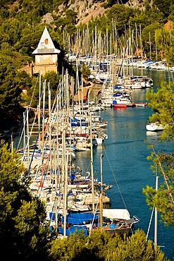 Port-Miou marina, Cassis, Bouches du Rhone, Provence, France, Europe