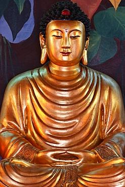 Buddha statue, Hong Hien Tu Temple, Frejus, Var, Provence, France, Europe