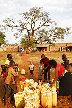 Water chore in a Ugandan village, Bweyale, Uganda, Africa