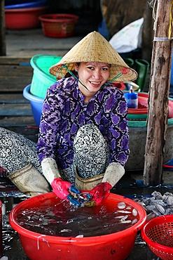Woman sorting through fresh catch of fish, Vung Tau fish market, Vung Tau, Vietnam, Indochina, Southeast Asia, Asia