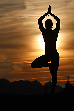 Silhouette of a woman in Vrkasana (tree pose) practising yoga against the light of the evening sun, French Alps, France, Europe