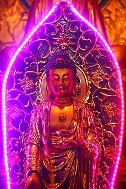 Buddha statue with neon light, Chua Thien Hung Buddhist Pagoda, Ho Chi Minh City, Vietnam, Indochina, Southeast Asia, Asia