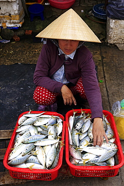 Woman selling fresh fish, Morning market in Duong Dong town, Phu Quoc, Vietnam, Indochina, Southeast Asia, Asia