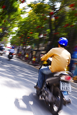 Motorbike on Ho Chi Minh Boulevard during Tet, Vietnam, Indochina, Southeast Asia, Asia