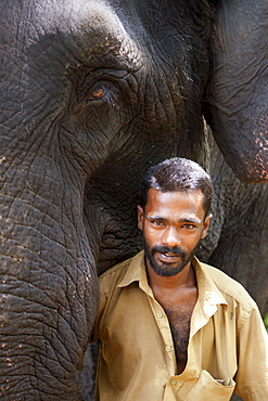Elephant with Mahoot, Kerala, India, Asia