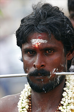 A penitent suffers to prove his faith during a Tamil religious procession, Chennai, Tamil Nadu, India, Asia