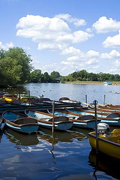 The Thames, Windsor, Berkshire, England, United Kingdom, Europe