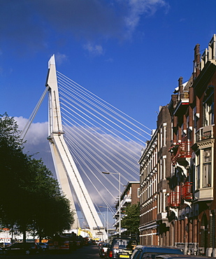 Side elevation showing cables of the Erasmus Bridge, built between 1990 and 1996, Rotterdam, The Netherlands, Europe