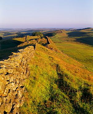 Housesteads, Hadrian's Wall, UNESCO World Heritage Site, Northumberland, England, United Kingdom, Europe