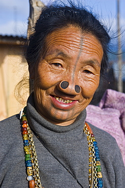 Old woman of the Apatani tribe famous for the wooden pieces in their nose to make them ugly, Ziro, Arunachal Pradesh, Northeast India, India, Asia