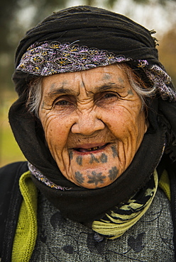 Old Kurdish woman with tattoos on her face in the Martyr Sami Abdul-Rahman Park in Erbil (Hawler), capital of Iraq Kurdistan, Iraq, Middle East