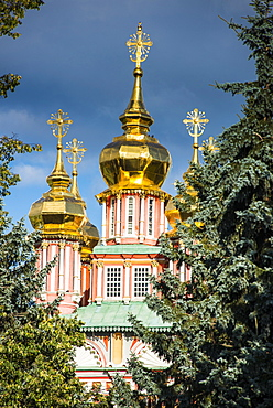 The golden domes of the Trinity Lavra of St. Sergius, UNESCO World Heritage Site, Sergiyev Posad, Golden Ring, Russia, Europe