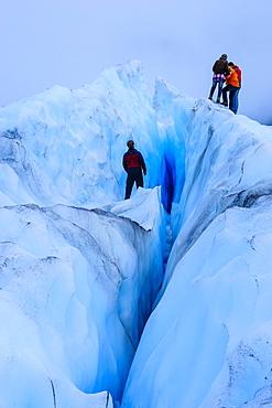 Tourist hiking on Fox Glacier, Westland Tai Poutini National Park, South Island, New Zealand, Pacific