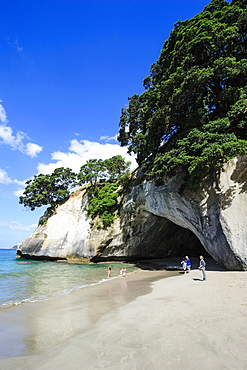 Cave as an entrance to the beautiful Cathedral Cove, Coromandel, North Island, New Zealand, Pacific
