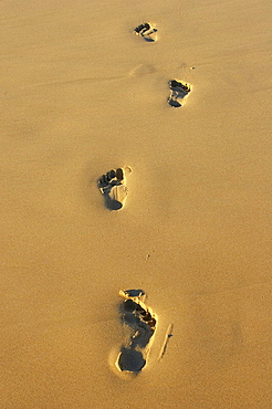 Footprints, Surfers Paradise, Gold Coast, Queensland, Australia