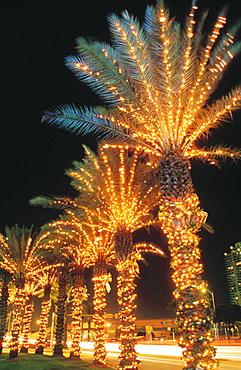 Christmas decorations, 5th Street, Miami Beach, Florida, USA