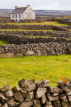 Inishmore, Aran Islands, Galway Co, Ireland