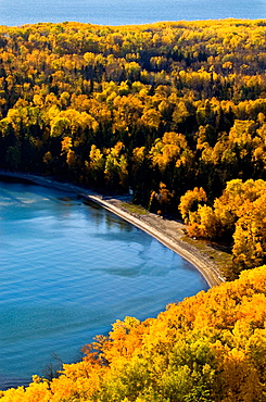 Aspen forest in autumn colour overlooking Lake Superior, Rossport, Ontario