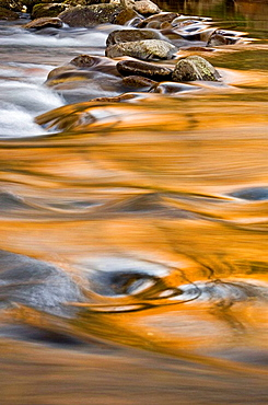 Evening reflections in the Little River, Great Smoky Mountains National Park, Tennessee, Appalachian, USA