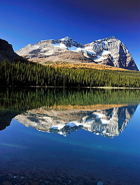 Mount Odaray reflected in Lake O'Hara