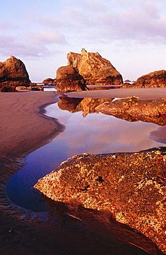 Sea stacks on Bandon Beach at sunrise, Southern Oregon Coast, USA