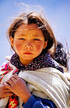 Young Tibetan girl, Himalaya Mountains, India - 817-128624