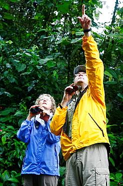 Bird Watchers at the Arenal rainforest, La Fortuna area, Costa Rica
