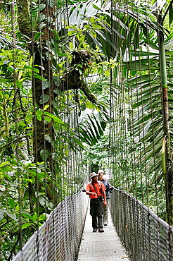 Hikers at the Arenal rainforest reserve walking on a hanging bridge, La Fortuna area, Costa Rica