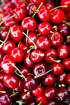 Cherries, Ballaro Market, Palermo, sicily