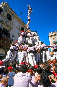 'Castellers' building human towers, a Catalan tradition, Vilafranca del Penedes, Barcelona province, Spain