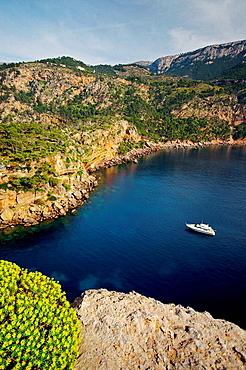 Camino de sa Foradada, Son Marroig, Valldemossa, Sierra de Tramuntana, Majorca, Balearic Islands, Spain