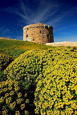 Stuart tower (aka Torre d'en Penjat, 18th century) guarding the entrance to the port of Mao on Sant Esteve cove, Mao, Minorca, Balearic Islands, Spain