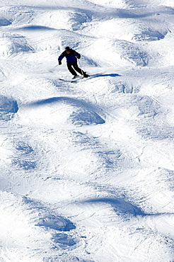 Man skiing downhill with moguls, Tignes, The Alps, France