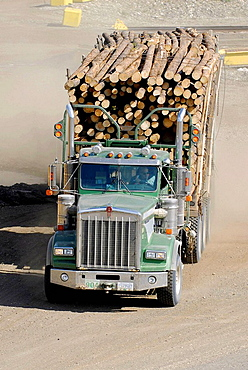 Logging Trucks Transport Lumber Forestry Logging Wood Industry Quesnel British Columbia BC Canada natural resources