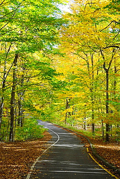 The Pierce Stockling Scenic Drive during Autumn fall color foliage in the Sleeping Bear Dunes National Park along the shores of Lake Michigan on Michigan s western shore
