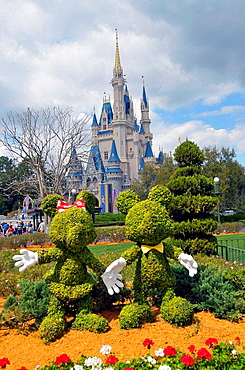 Topiaries of Mickey and Minnie Mouse at Walt Disney Magic Kingdom Theme Park Orlando Florida Central