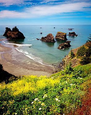 Pacific Ocean view from Samuel H, Boardman State Scenic Corridor, Oregon, USA