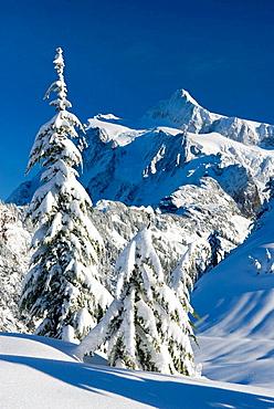 Mount Shuksan in winter from Kulshan Ridge, Heather Meadows Recreation Area, Washingtron, USA