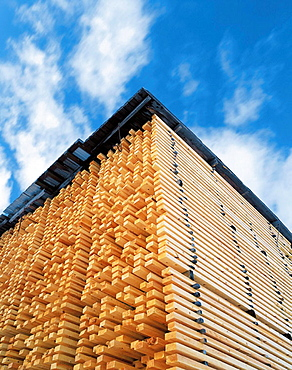 Wood, forest, timber, blue sky, clouds, Vasterbotten, Sweden - 817-161855