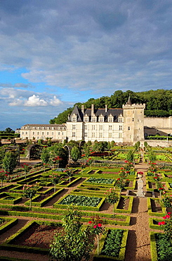Villandry castle and gardens, Chateau de Villandry, Indre-et-Loire.Touraine, Loire Valley, France
